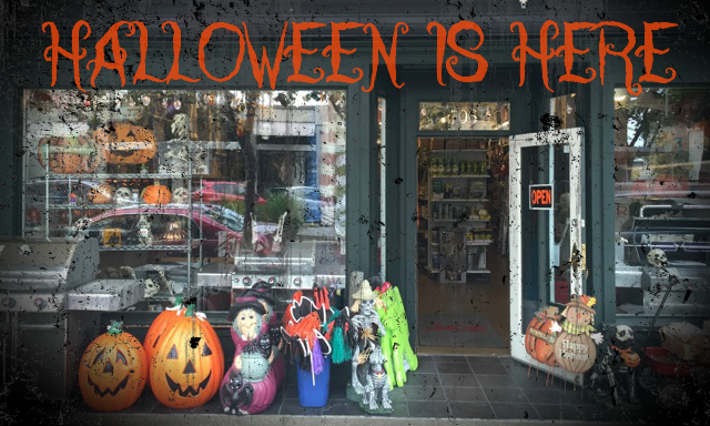 Happy Halloween – Menlo Park Halloween Supplies to keep you in spirit this year!